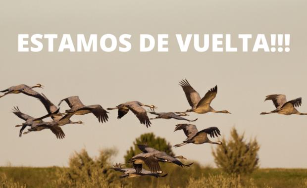 ESTAMOS DE VUELTA - Mercedes-Benz Extremadura